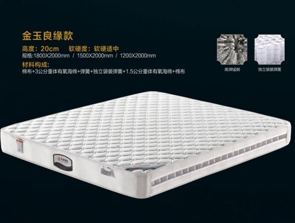 哈尔滨乐虎国际官网